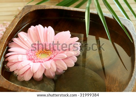 Pink gerber  floating in wooden bowl. spa background