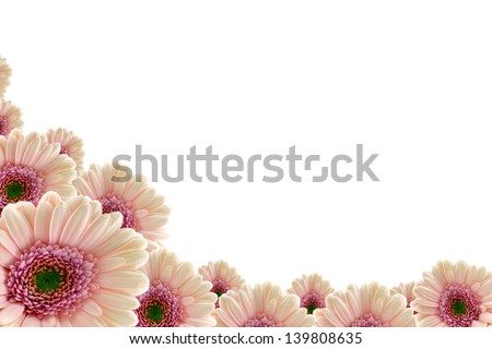 Pink gerbera daisy border with space for your own message. - stock photo