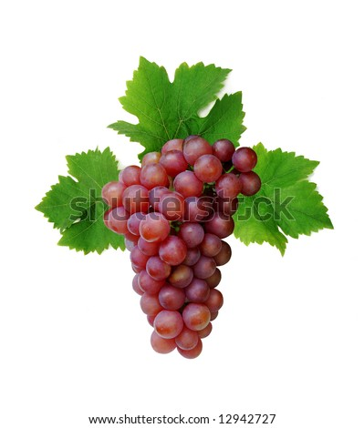 Pink grape cluster with leaves, isolated - stock photo