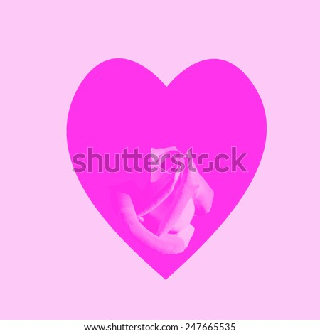 pink heart with rose on a pink background - stock photo