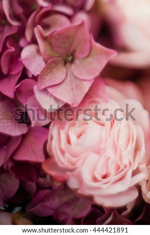 pink hydrangea and pink rose - stock photo
