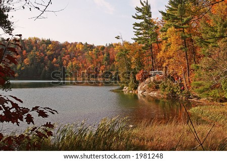 Pink lake shore line in fall colors - stock photo