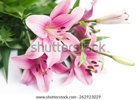 Pink Lilies Flowers Bouquet, Beautiful, Delicate and Scented Flowers - stock photo