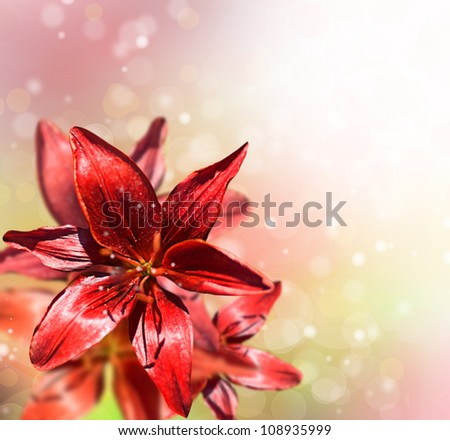 Pink lilies on a abstract background