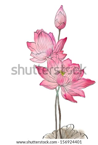 Pink lotus on white background - watercolor - stock photo