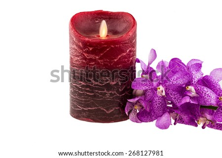 Pink mokara orchids with electrical candle isolated on white background - stock photo