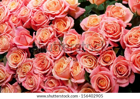 Bouquet roses different colors top view stock photo for Natural rose colors