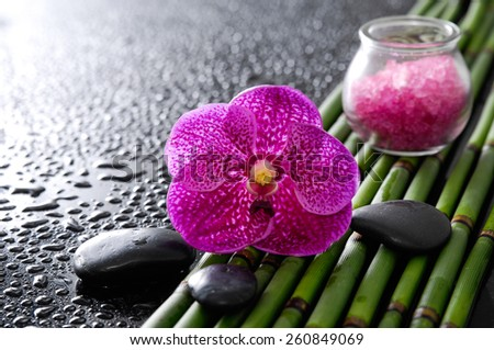 pink orchid and bamboo grove,salt in glass ,stone, on wet black background  - stock photo