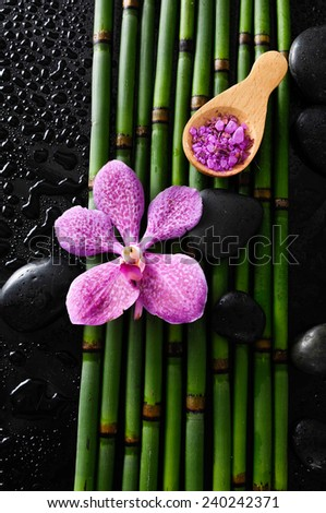 pink orchid and bamboo grove,salt in spoon ,stone, on wet black background  - stock photo