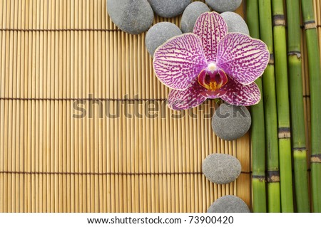 Pink orchid and stones with thin bamboo grove on stick straw mat - stock photo