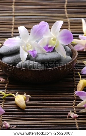 Pink orchid and therapy stones - stock photo