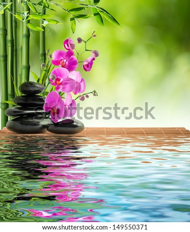 pink orchid black stone and bamboo on water - stock photo