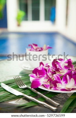 Pink orchid in a white cup and plate.