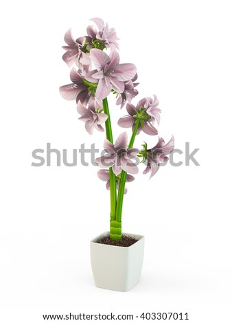 Pink orchid in a white flowerpot isolated on white background. 3D Rendering, 3D Illustration. - stock photo