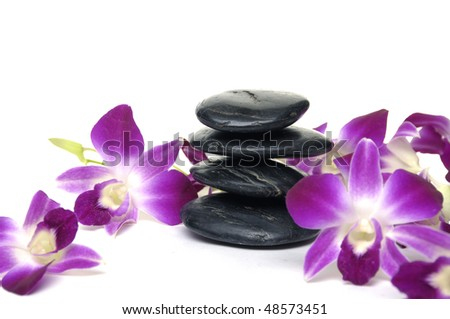pink orchid with stacked of stones