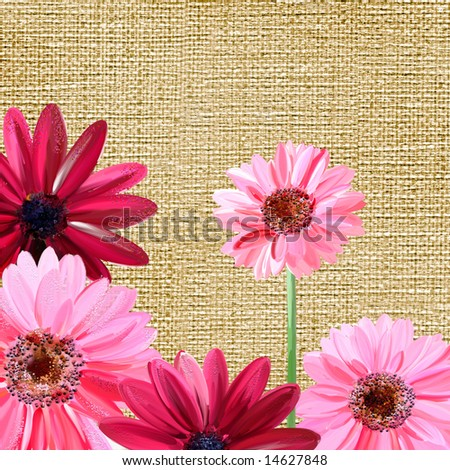 pink painted flowers over canva texture - stock photo