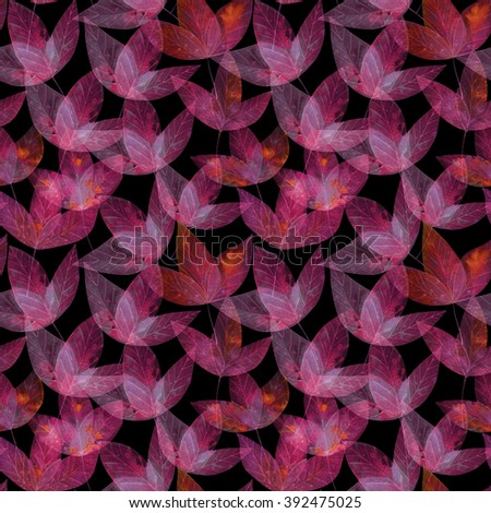 pink pattern from the leaves. floral cover of the book. leaf background