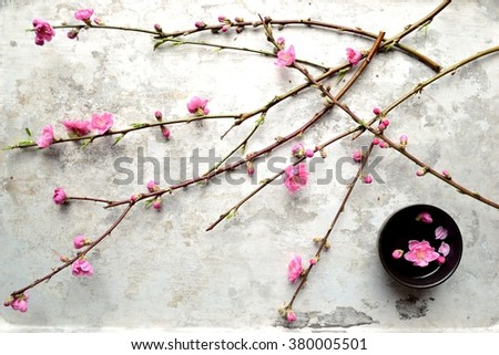 Pink peach blossoms with black small bowl on the silver background.Japanese style flower arrangement on spring season - stock photo