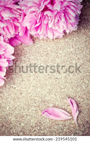 Pink peonies and petals on wooden background. Copy space, frame, border composition. - stock photo