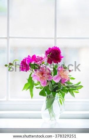 pink peonies in a transparent vase in the window - stock photo