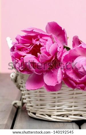 Pink peony flower in white wicker basket - stock photo