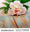 pink peony on old wooden background - stock photo