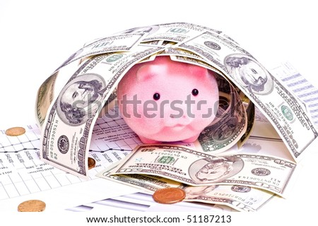 Pink pig in house from dollars isolated on white - stock photo