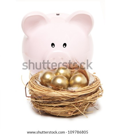 Pink piggy bank and golden egg in the nest