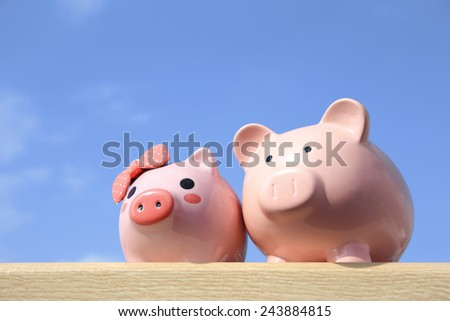 Pink piggy bank couple with blue sky, great for business and family concept - stock photo