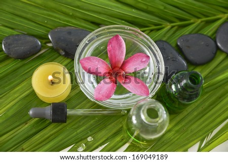 Pink plumeriaon bowl and stones ,massage oil and palm leaf  - stock photo