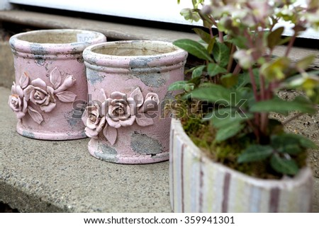 pink pot and flower in pot at flower shop - stock photo