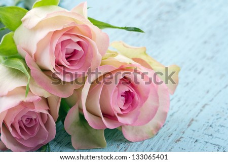 Pink romantic roses on light blue wooden shabby chic background - stock photo