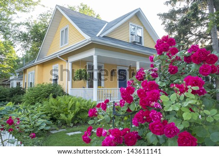 Pink Rose Bush in Front of a Beautiful Yellow House - stock photo