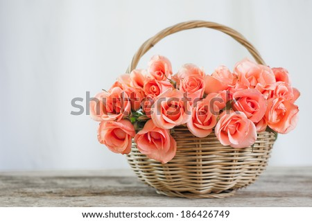 pink rose in basket