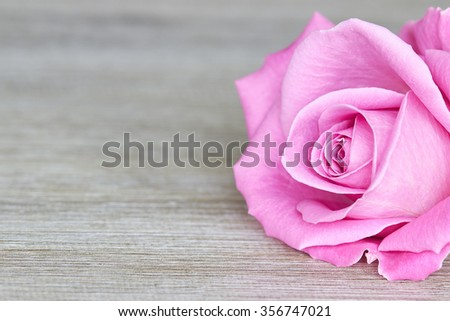 Pink rose on wood