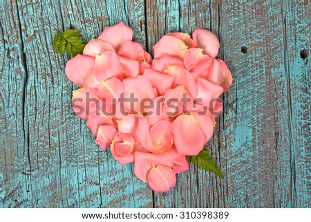 pink rose petal heart with fern arrows on retro turquoise painted rustic barn wood - stock photo