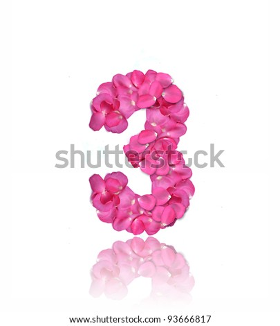 Pink rose petals number on white background.