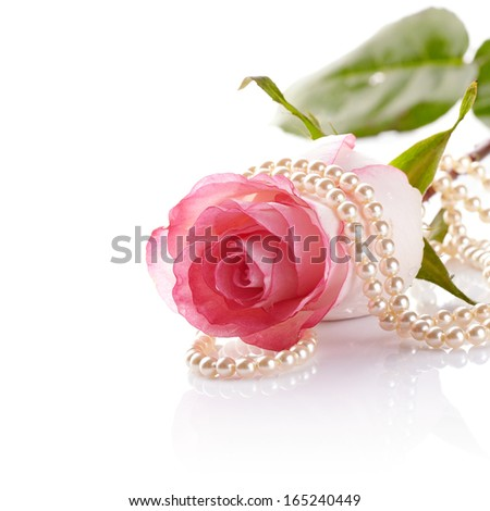 Pink rose. Rose on a white background. Pink flower. Pink rose and pearl beads.