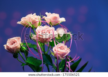 Pink rose with blue and pink circle blurry background - stock photo