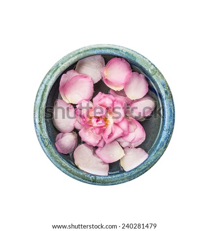 Pink rose with petal in blue bowl with water, isolated on white background, top view - stock photo