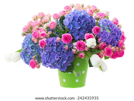pink roses and blue hortenzia flowers in green pot isolated on white background - stock photo