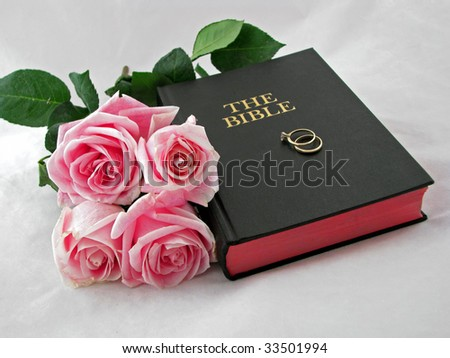 pink roses and wedding rings on the bible - stock photo