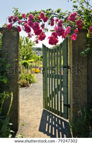 Pink roses hanging over open garden gate entrance - stock photo