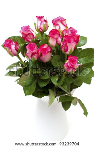 pink roses in a white vase isolated on white - stock photo