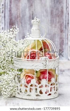 Pink roses in beautiful vintage birdcage. Wedding decor idea - stock photo
