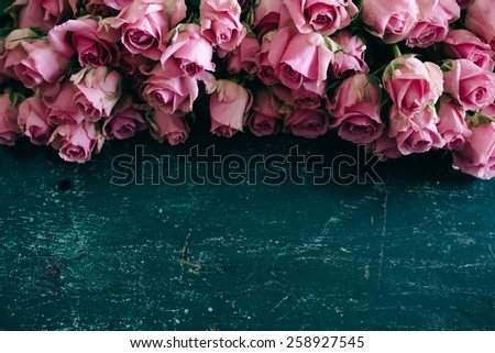 Pink roses in bloom on a blue wooden table - stock photo