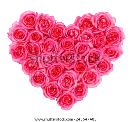 Pink roses in heart shape isolated isolated on white background - stock photo