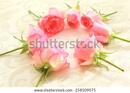 Pink roses in the shape of a circle - stock photo