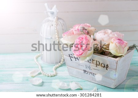 Pink roses in wooden pot  and candle in ray of light on turquoise background against white wall.  Selective focus. Place for text. - stock photo