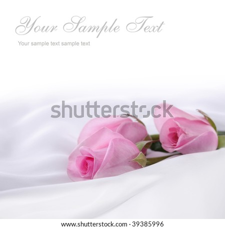 pink roses on a white silk - stock photo